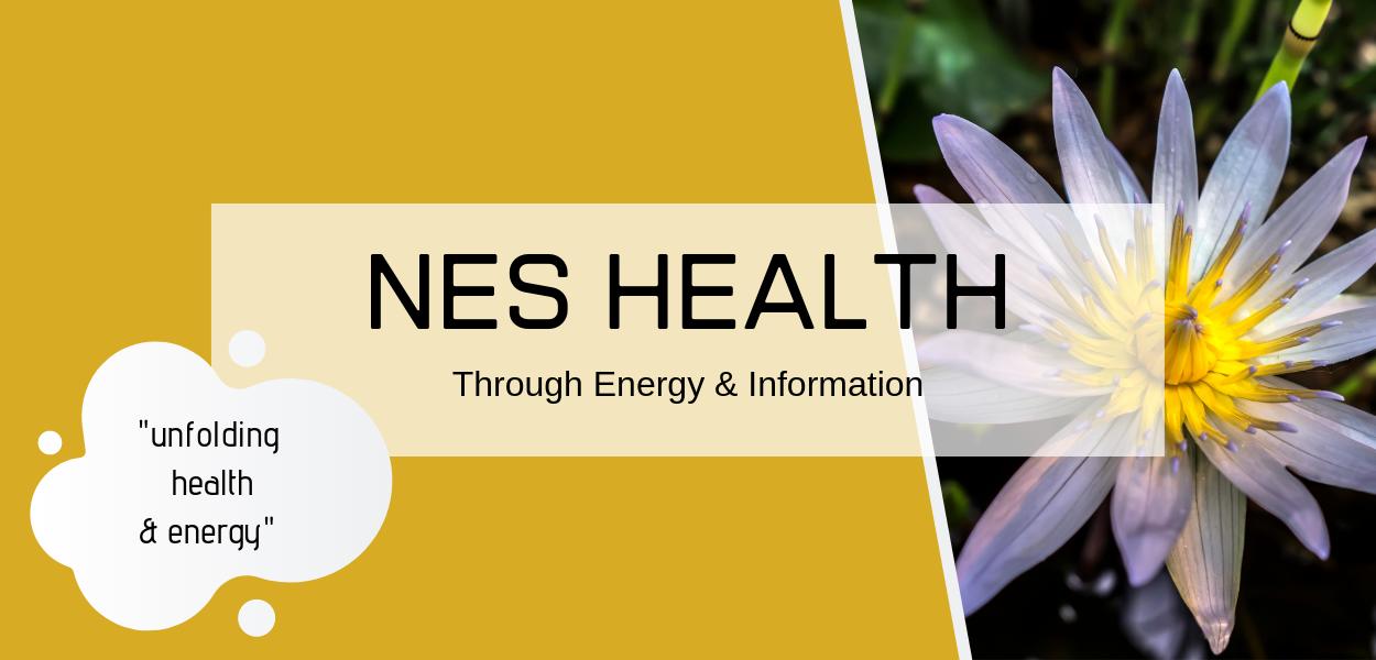 Bioenergetics Health and Wellness